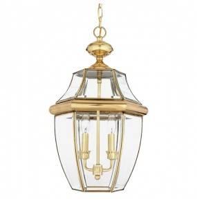 Lampa wisząca Newbury QZ/NEWBURY8/L Quoizel zewnętrzna oprawa w kolorze mosiądzu