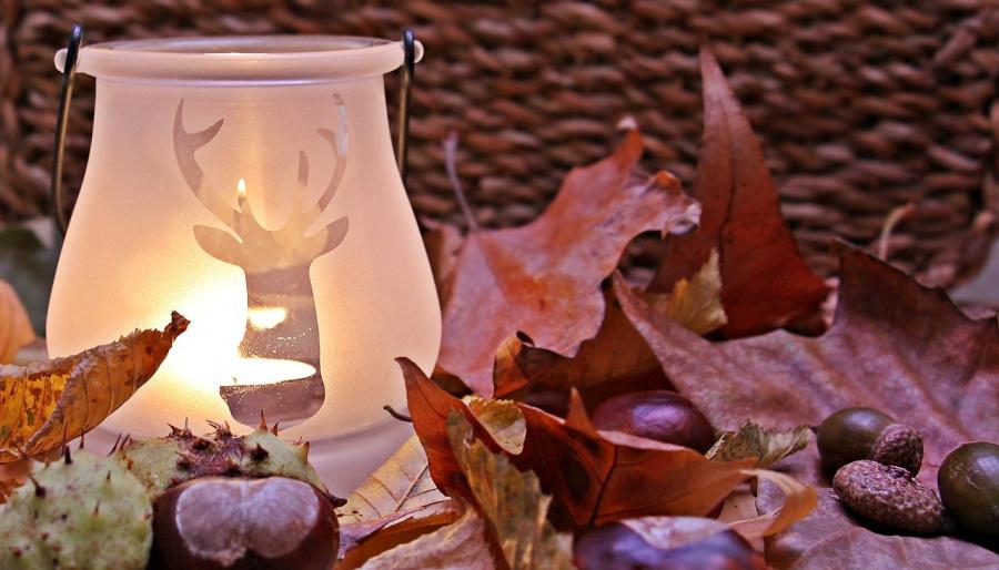 Przegoń jesienną chandrę - lecznicza moc światła